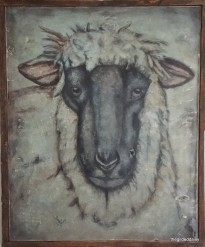 This framed Moddy Sheep is available to purchase